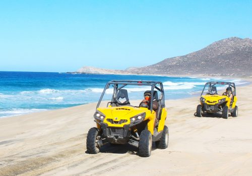Los Cabos Private Tours